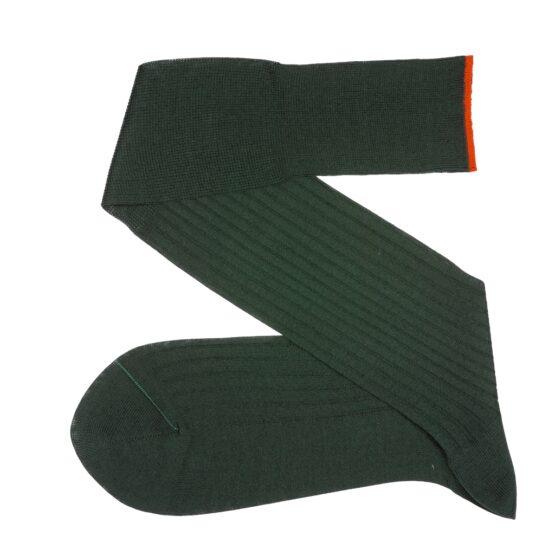 Viccel Socks Clementsen green